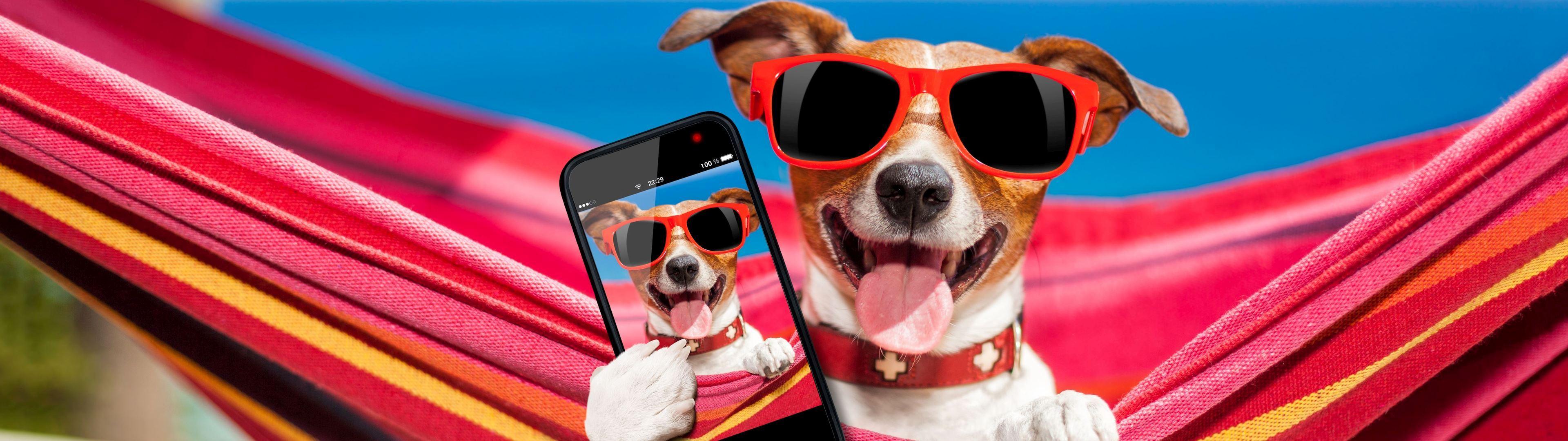 WallpaperFusion-selfie-Original-3840x1080.jpg